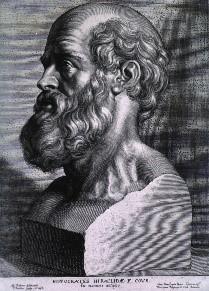 hippokratesz-kopaszsag-ellenszere